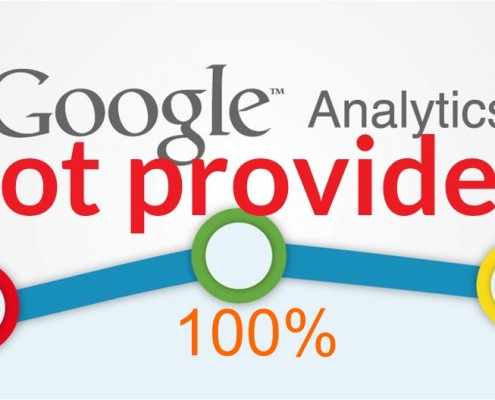 Google Analytics raggiunge il 100% di not provided